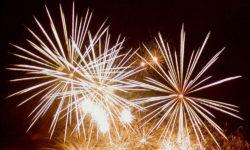I cani e la paura dei fuochi d'artificio